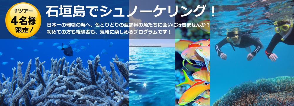 石垣島でシュノーケリング!