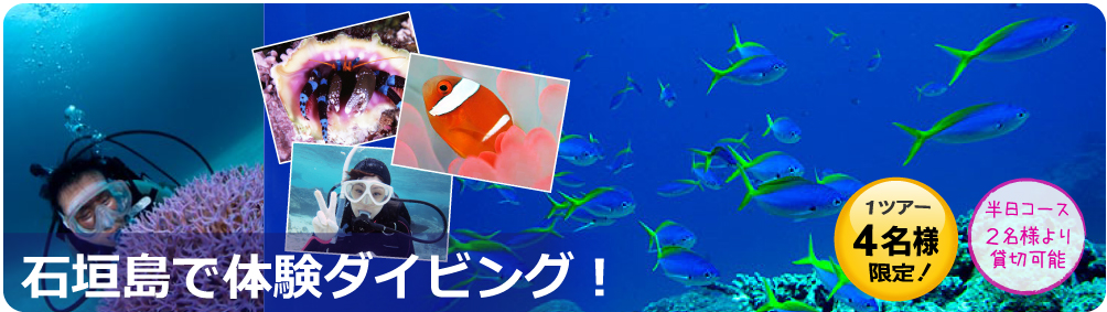 石垣島で体験ダイビングしよう!